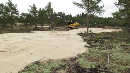 Sandgrop