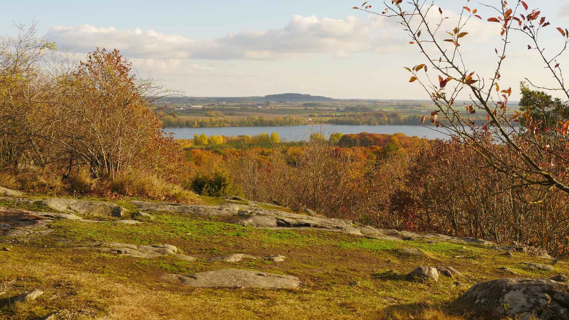 Från Balsbergets topp är det fin utsikt över Råbelövssjön och jordbrukslandskapet. Foto: Mattias Roos, Kristianstads kommun