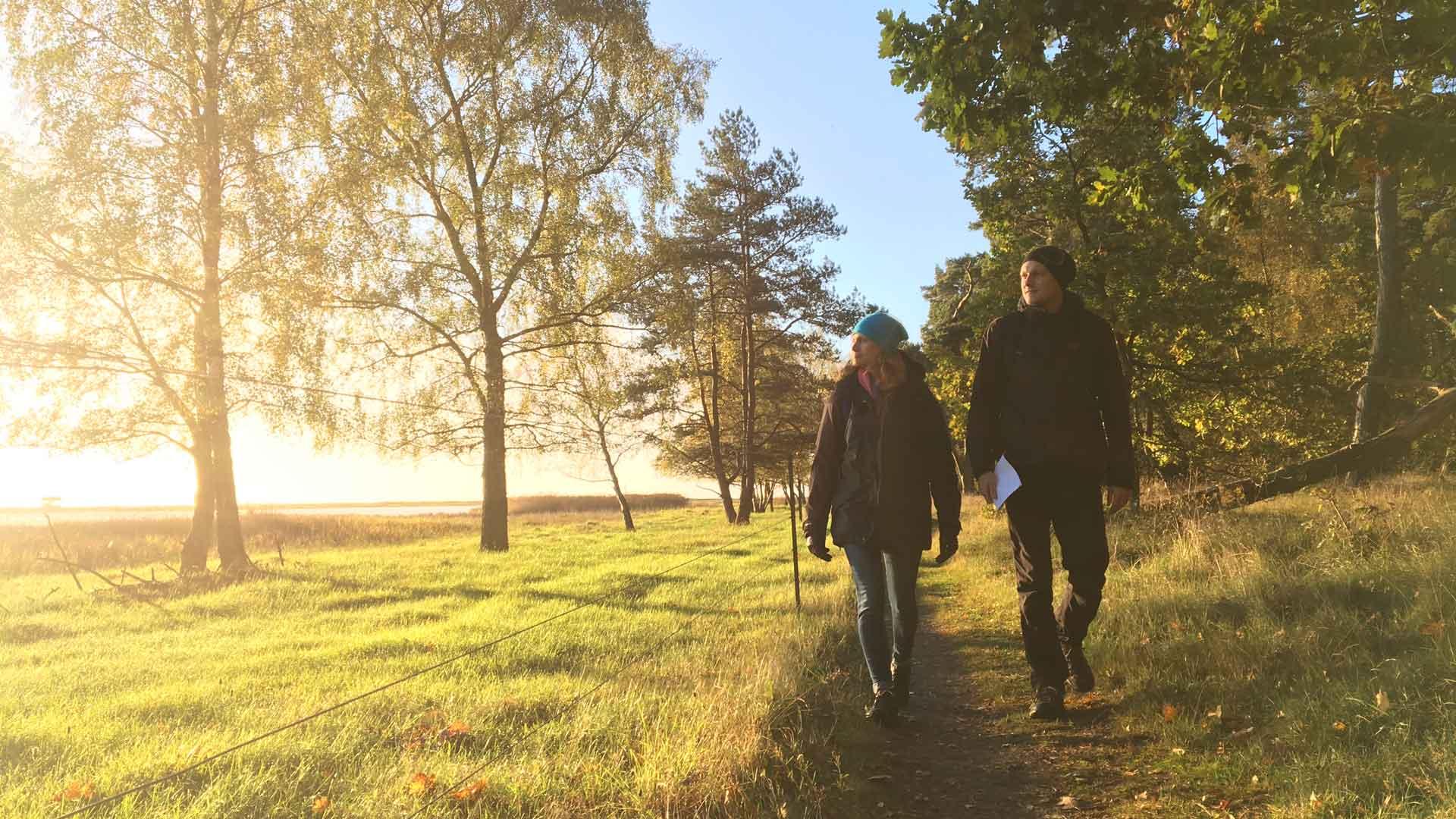 Det är fina promenadstråk vid Äspet. Foto: Åsa Pearce