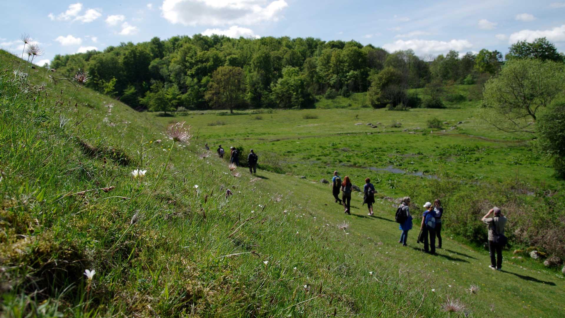 Degeberga backar bjuder på fin vandring. Foto: Victor Englund