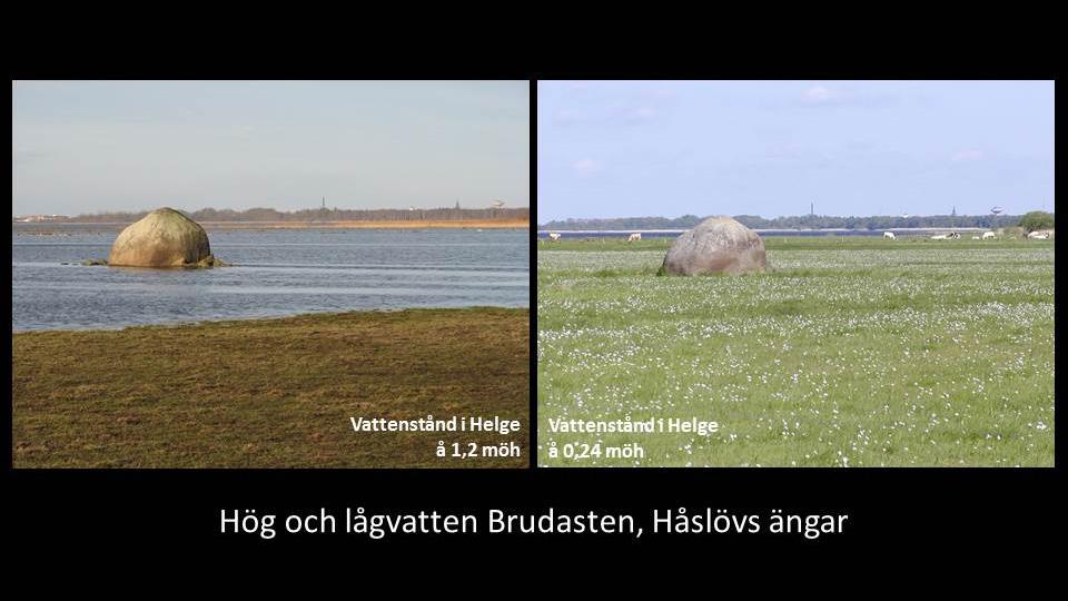 Hög och lågvatten vid Brudasten, Håslövs ängar