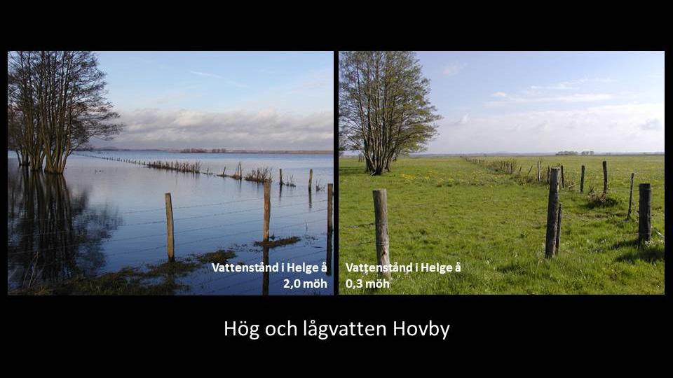 Hög och lågvatten vid Hovby