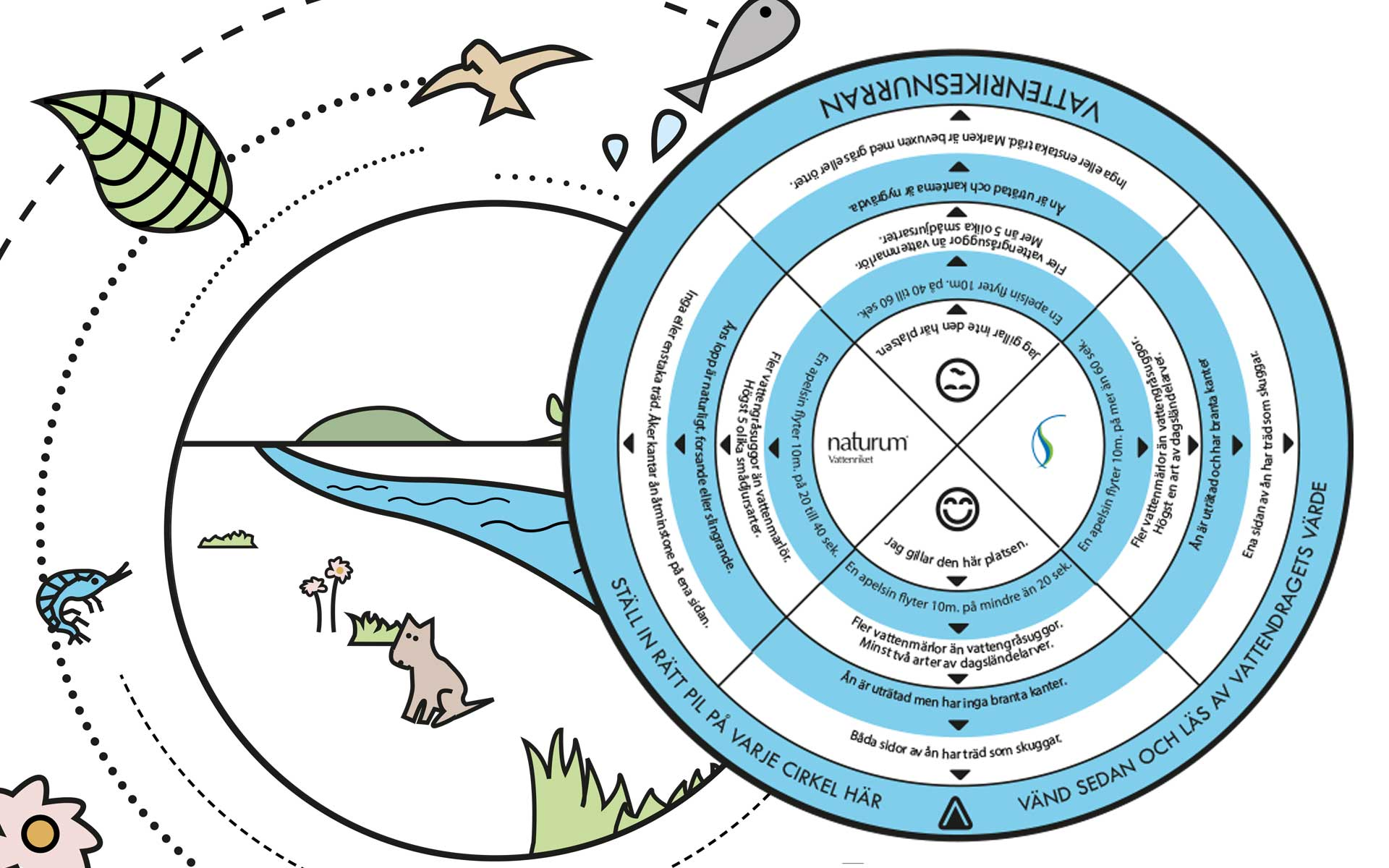 Vattenriketsnurran