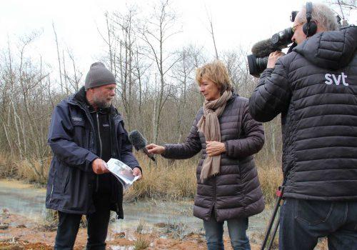 Hans Cronert Intervjuas Om Järnproblematiken På Strandängarna. Foto Åsa Pearce