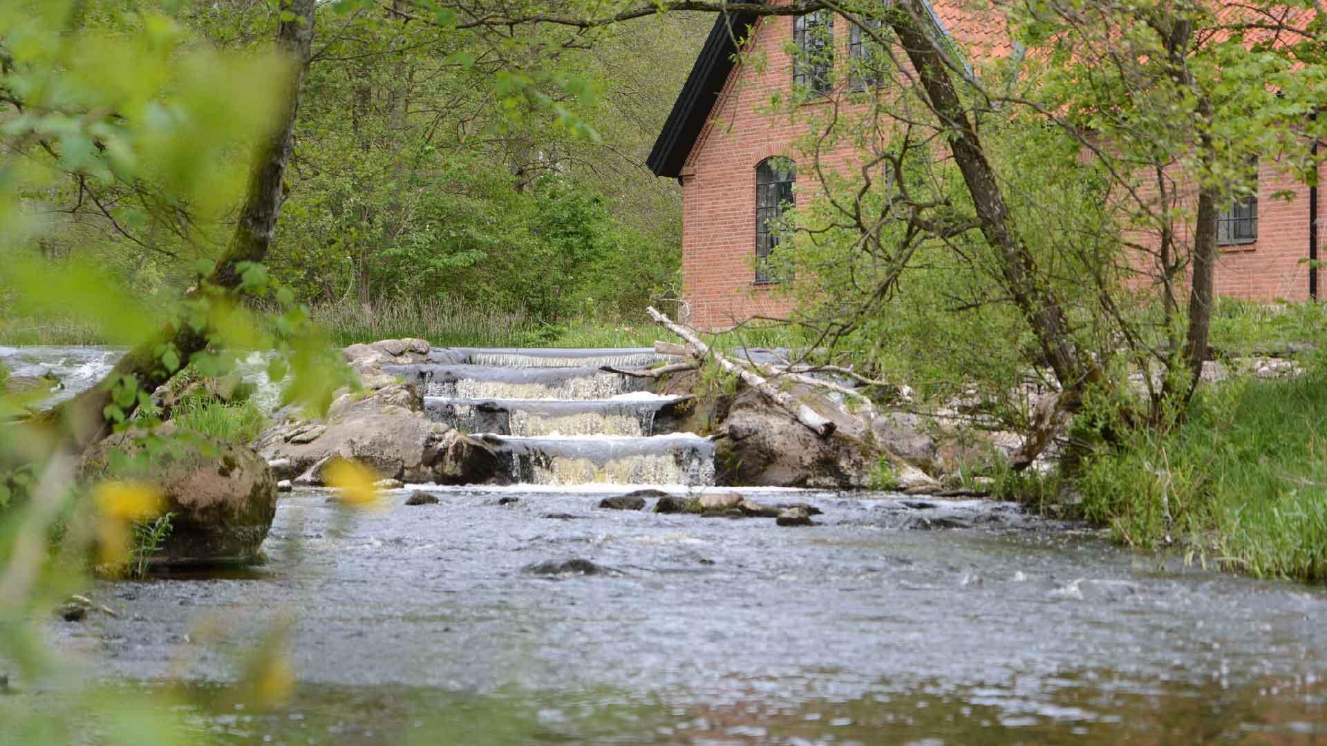 Fallet vid gamla badplatsen i Gärds Köpinge, Vramsån. Foto: Mattias Roos, Kristianstads kommun