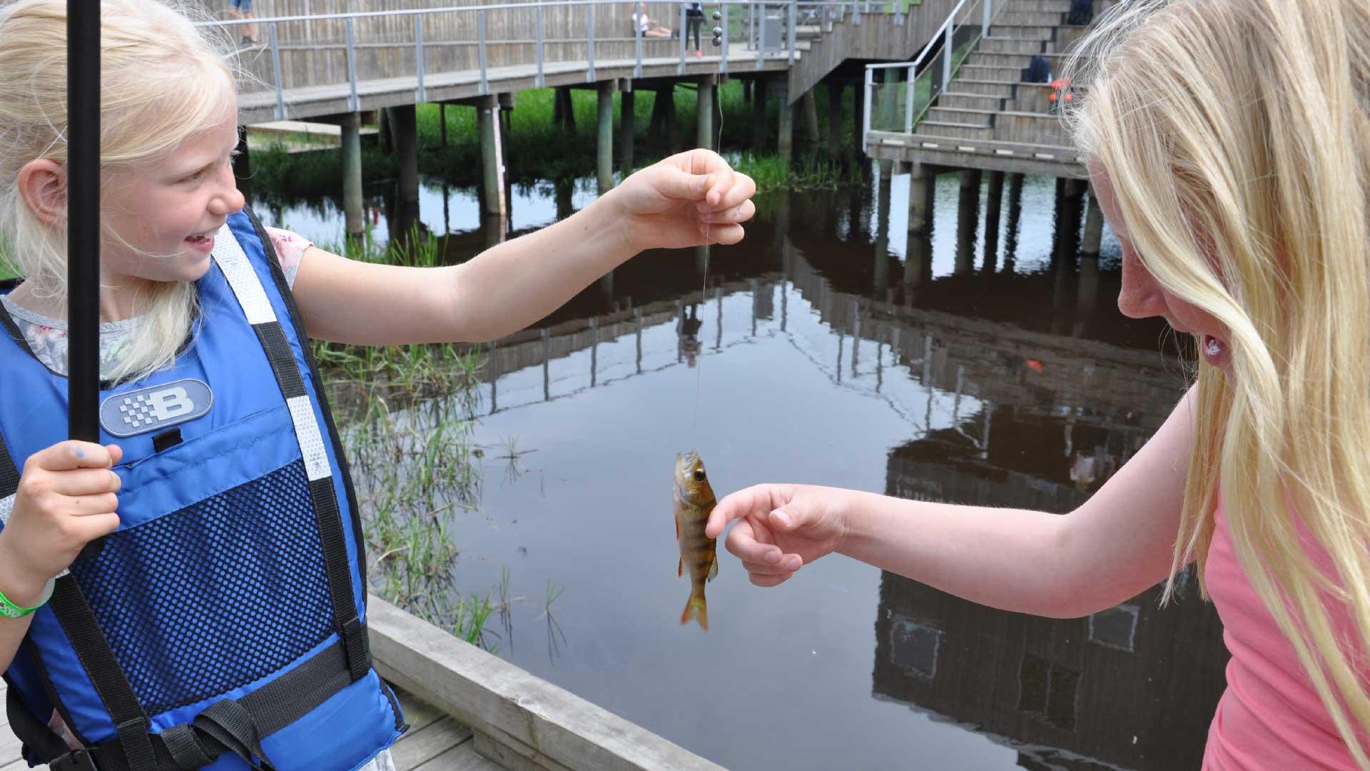 Barn får meta vid naturum Vattenriket. Foto: Åsa Pearce