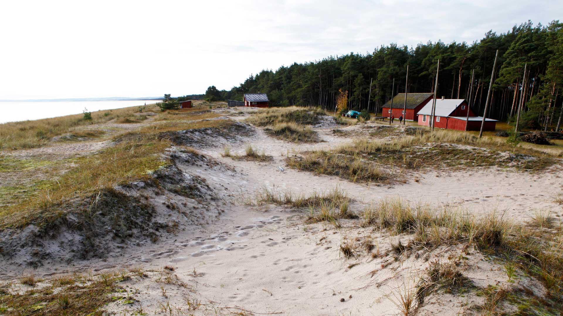 Hansaboden är en av alla ålabodar som ligger längs Hanöbukten - ålakusten. Foto: Patrik Olofsson/N