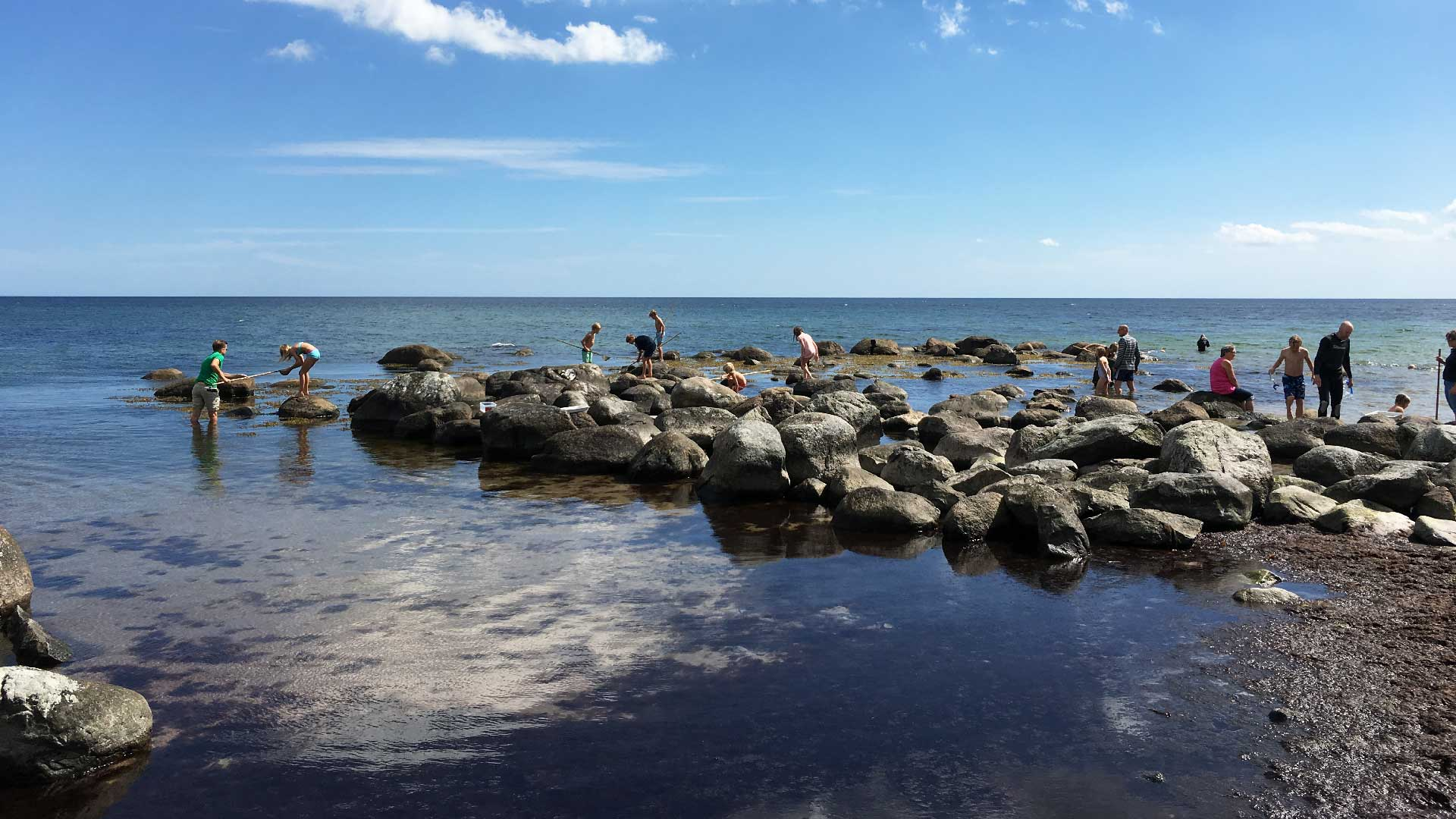 Vid Snickarhakens stenar finns gott om liv under ytan att upptäcka. Foto: Karin Magntorn