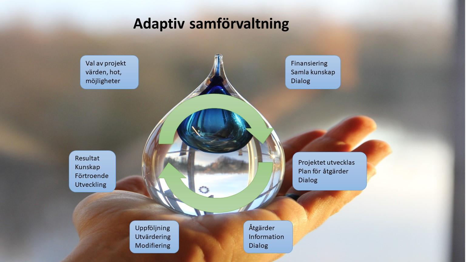 Adaptiv samförvaltning/bosfärmodellen