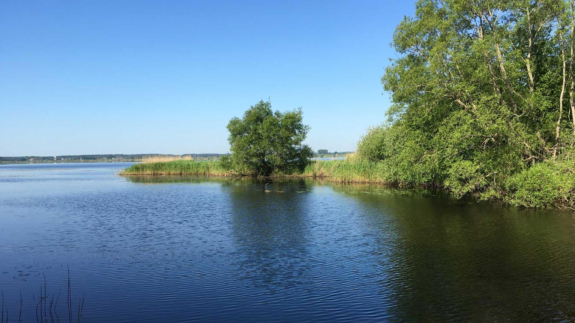 Utsikt över Hammasjön från Ekenabben. Foto: Karin Magntorn