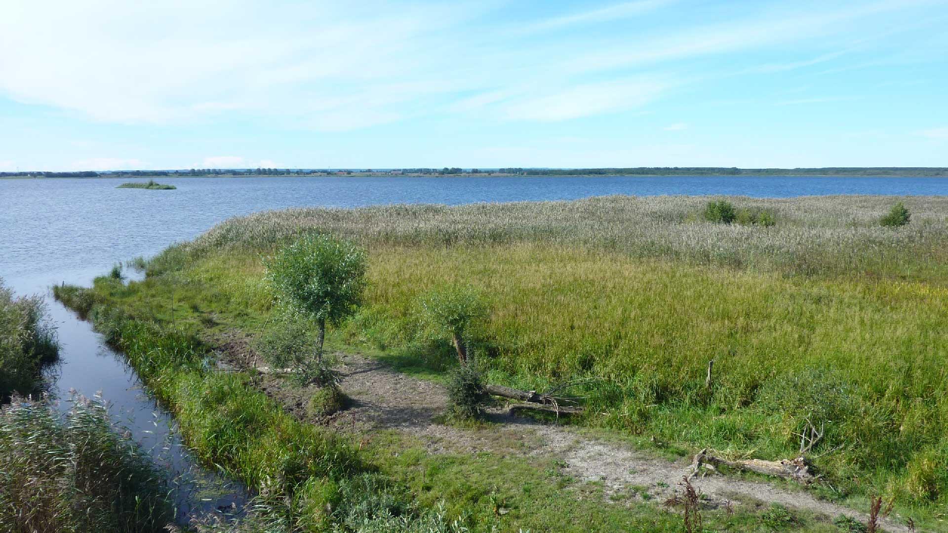 Hammarsjön sedd från Håslövs ängar. Foto: Sven-Erik Magnusson