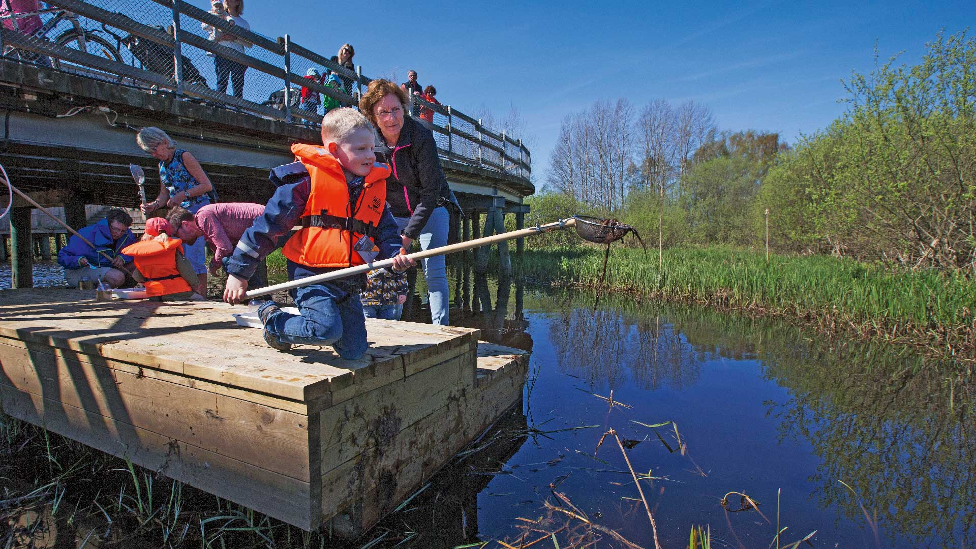 Håva vid naturums håvningsbrygga. Foto Patrik Olofsson/N
