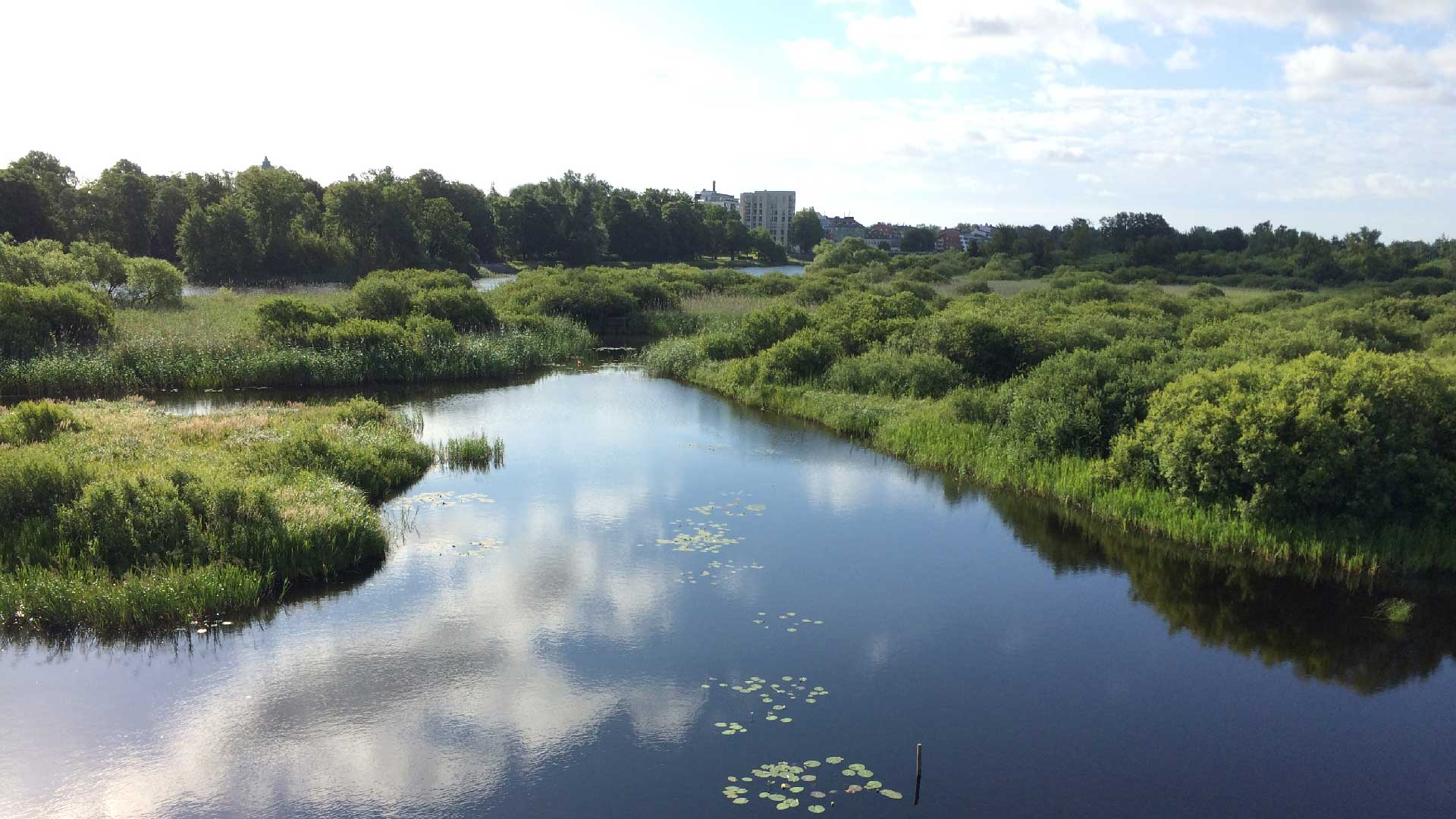 Vy över naturumsjön från Café Årum och takterrassen. Foto Karin Magntorn
