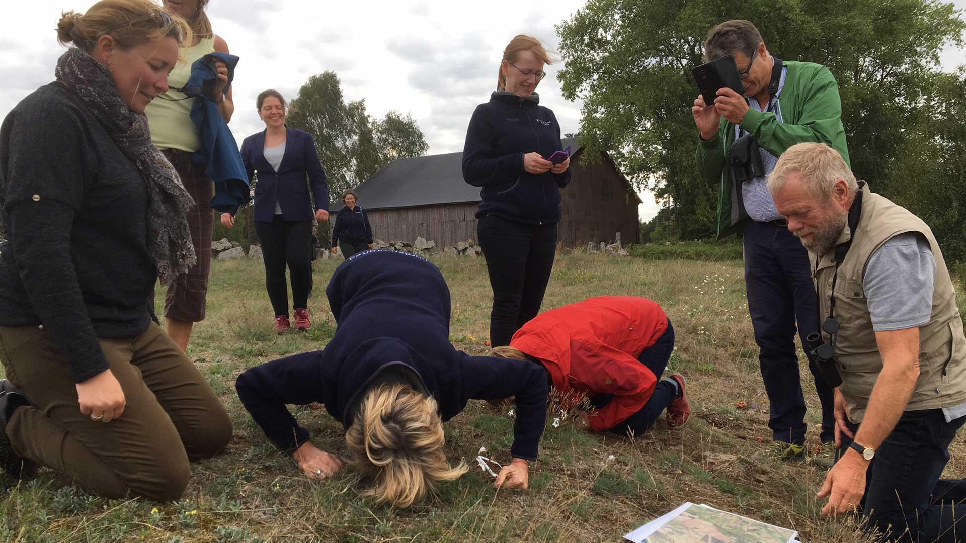Nordiska ministerrådets expertgrupp TEG besöker Sånnarna. Foto: Åsa Pearce