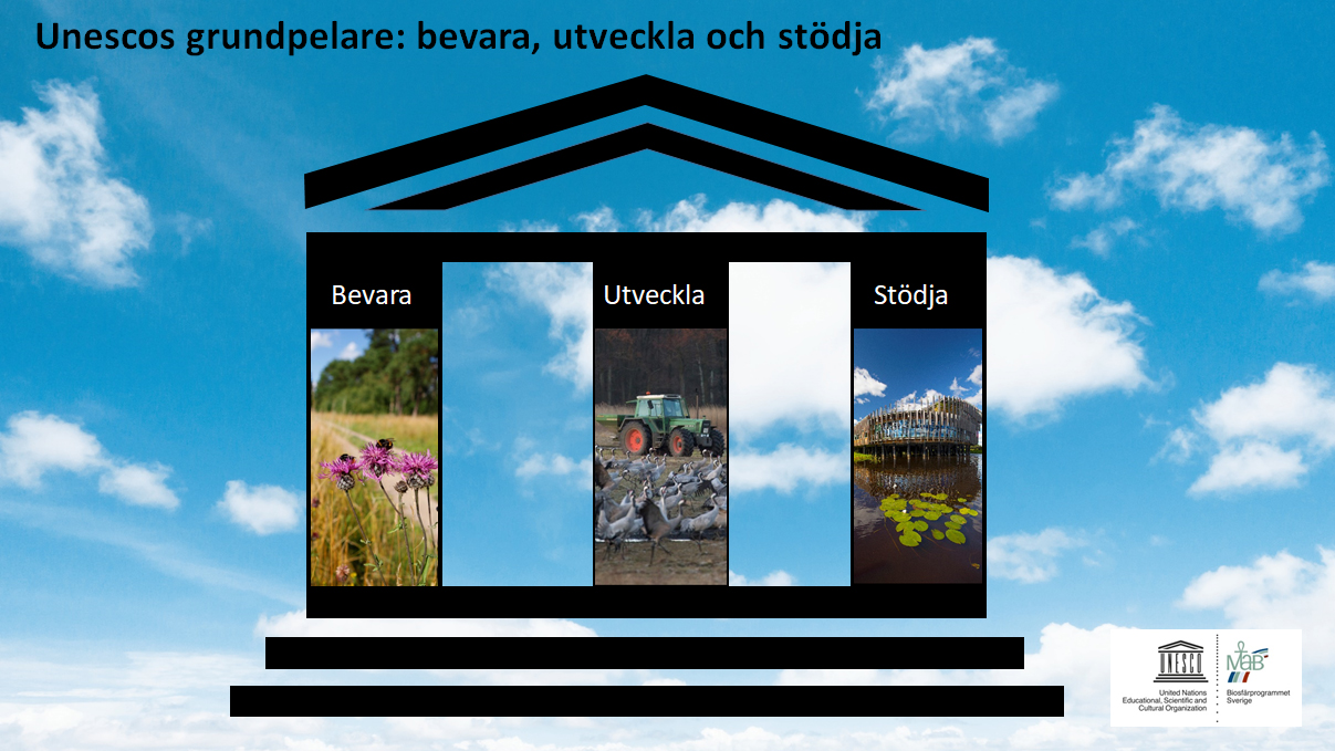 Unescos grundpelare: Bevara, utveckla och stödja