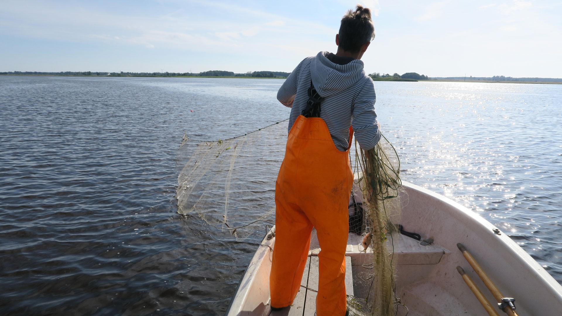 Provfiske i Hammarsjön. Foto: Andreas Jezek