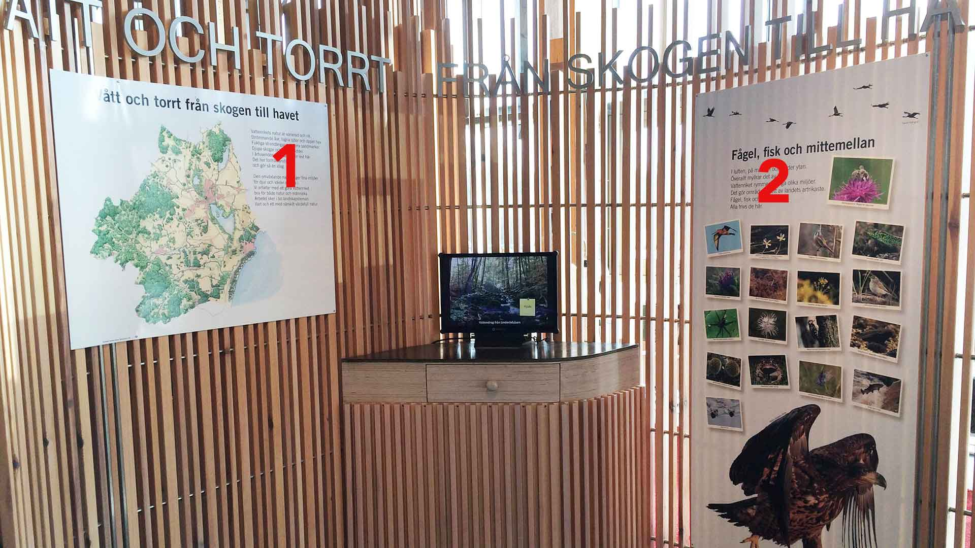 Exhibition - from forest to sea