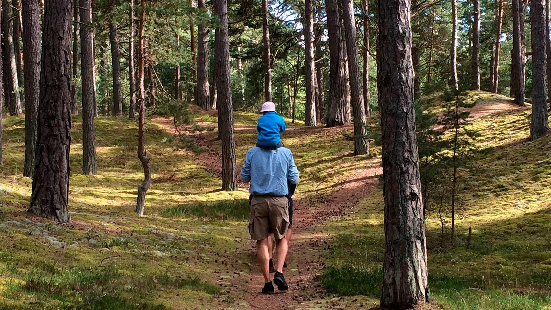 Promenad i skogen på Äspet. Foto Karin Magntorn