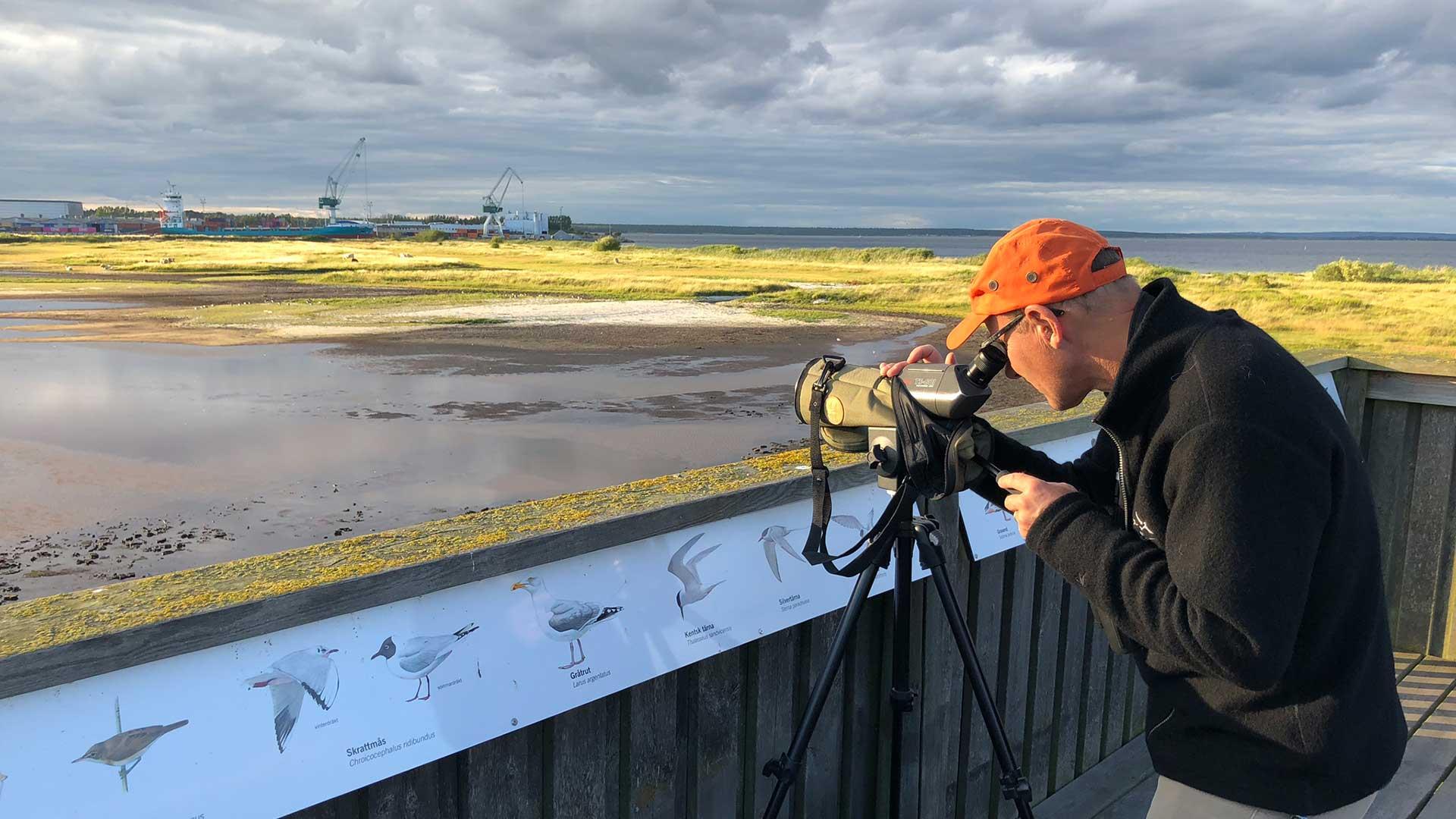 Fågelskådning över Äspets lagun. Foto Karin Magntorn