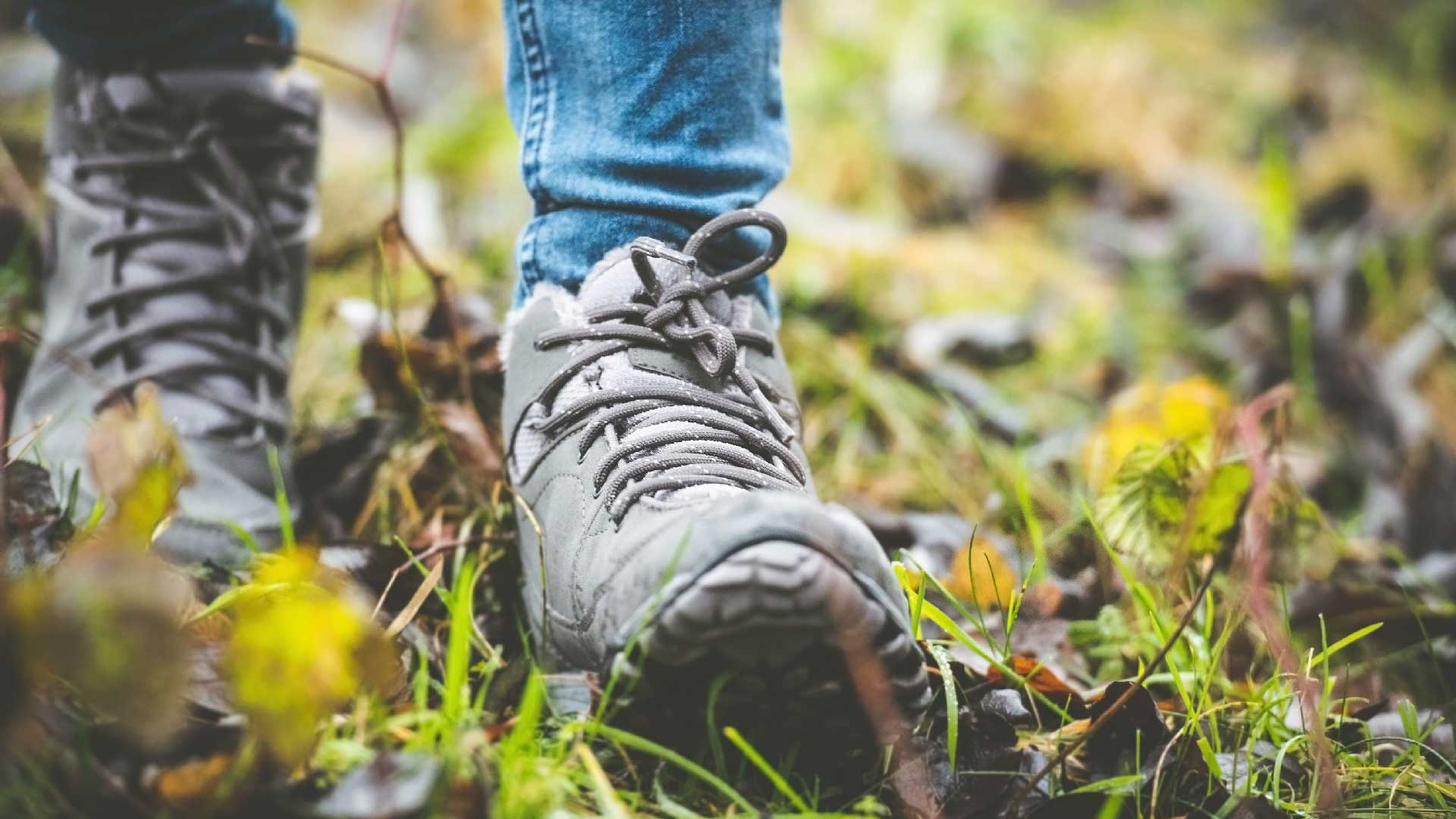 Närbild på en vandrares fötter. Foto: Adobe Stock