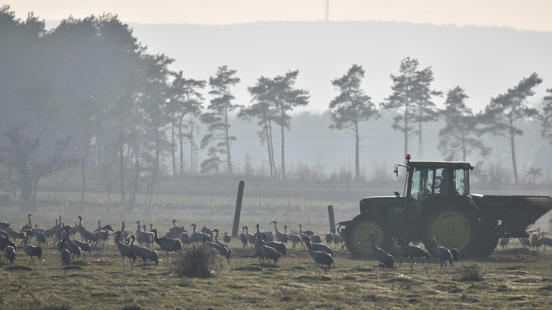 Hållbart Företagande I Lantbruk Och Besöksnäring