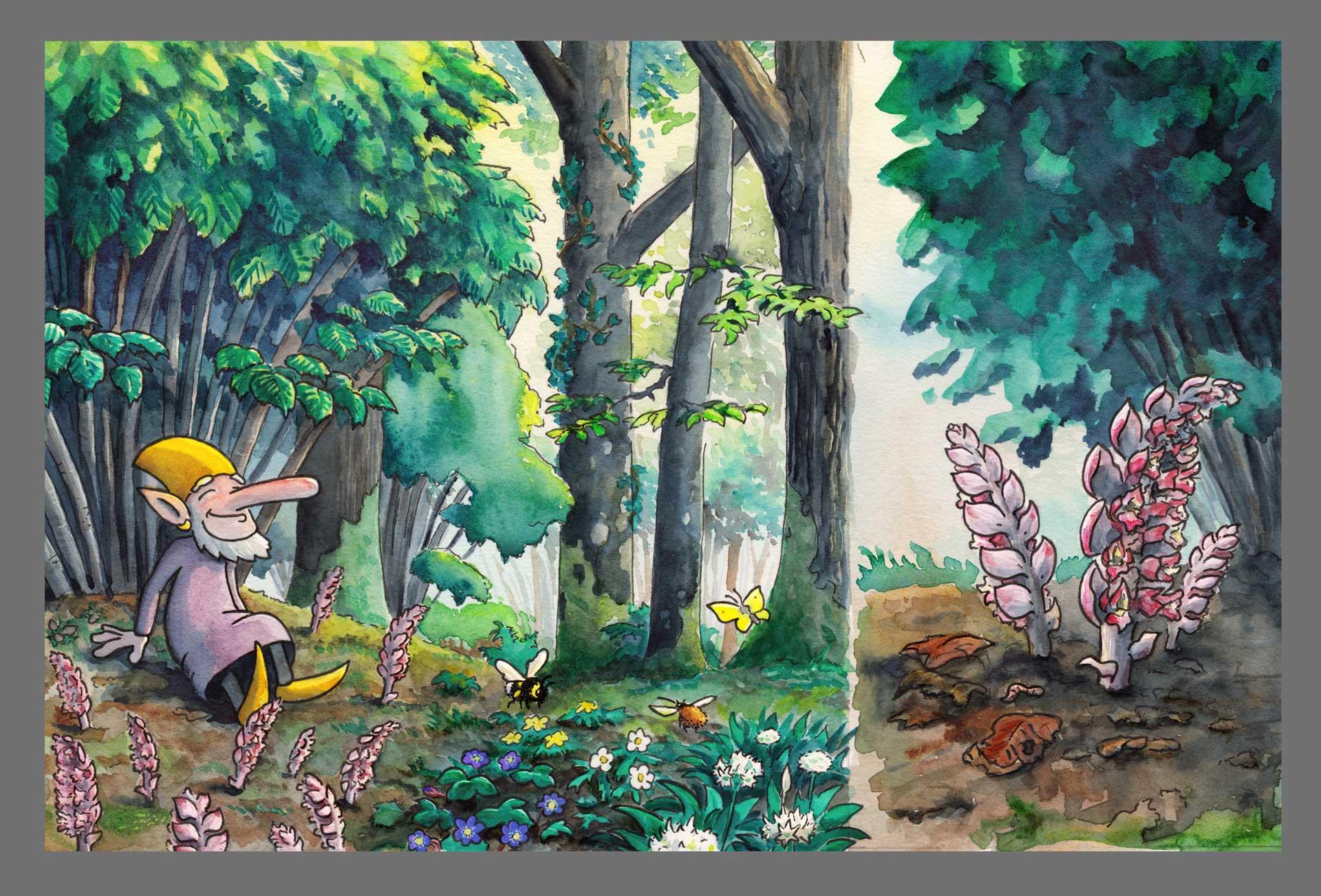 En nöjd vätte sitter tillbakalutad vid en hassel omgiven av vätterosor, blåsippor och ramslök. Illustration Erik Kohlström