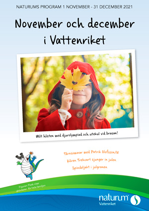 Naturums programblad hösten 2021. En filicka i röd jacka håller ett lönnlöv framför ansiktet