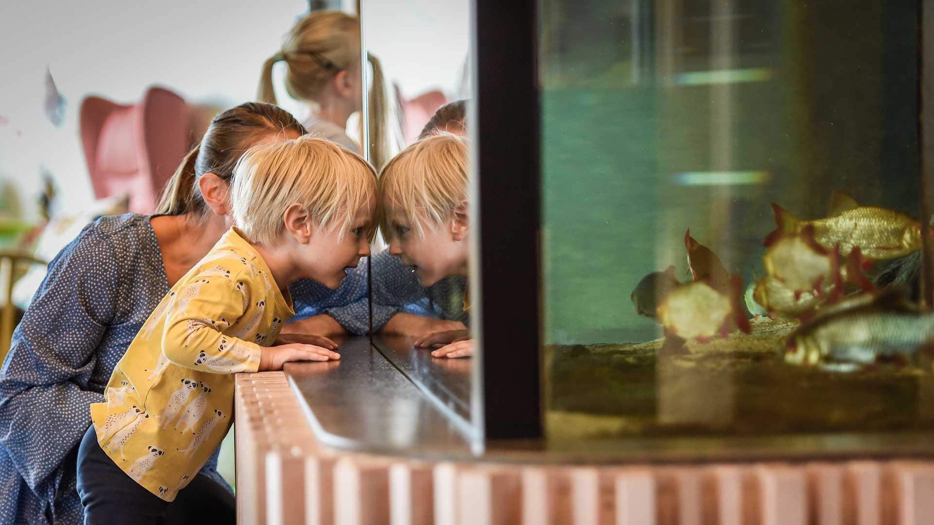 Barn och vuxen tittar på akvariet på naturum. Foto Jennie Ahlqvist