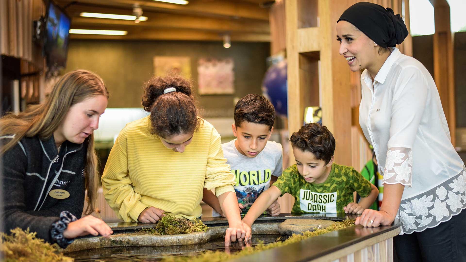 Tre barn och två vuxna letar småkryp i inomhusbäcken på naturum. Foto Jennie Ahlqvist